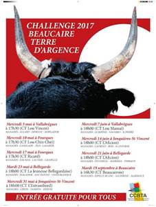 Course Camarguaise  Challenge 2017 Beaucaire Terre d'Argence