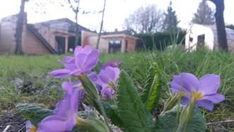 Lens - Hébergement insolite - Les Gîtes de l'école buissonnière