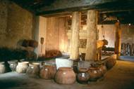 Mas des Tourelles - Cave Gallo Romaine