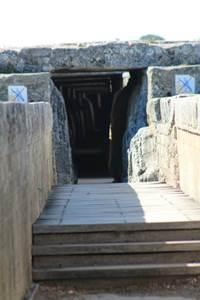 Visite guidée du Pont du Gard