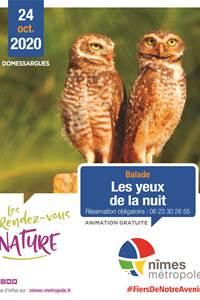"""RDV Nature """"Les Yeux de la Nuit"""""""