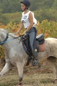Finales championnat de France d'endurace jeunes chevaux de l'endurance