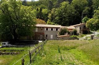Maison des Cévennes - Chambres d'hôtes