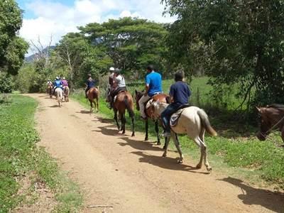 Pocquereux horse riding