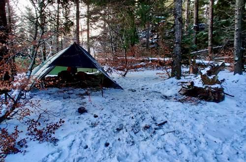 La vue des cimes campement hiver ©