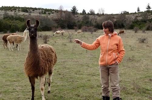 Causse et Lamas 8 ©