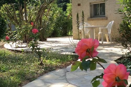 L'Hacienda - rose sur la terrasse ©